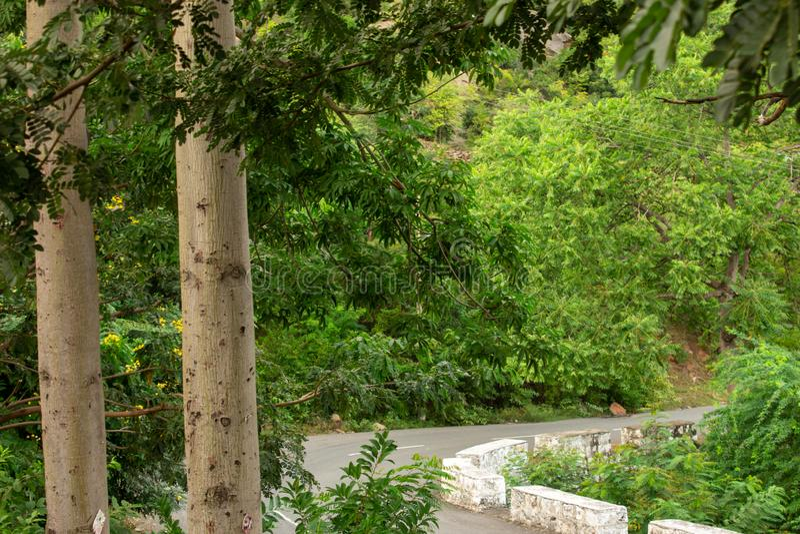 Vackra Ghat-vägen längs bergssträckan Salem, Tamil Nadu, Indien arkivbilder