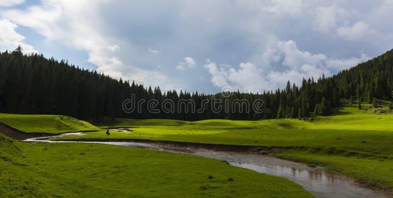 Vackra sommarlandskap i avlägsna landsbygdsområden i Europas berg, med stormmoln arkivbild