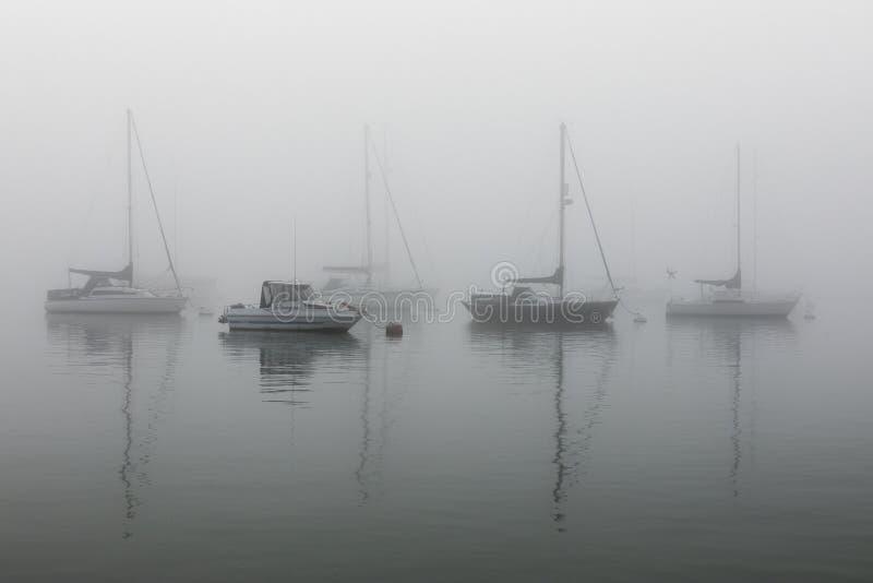 Vackra, stora skott på fem segelfartyg i havet på ett dimmigt och fuktigt väder royaltyfri fotografi