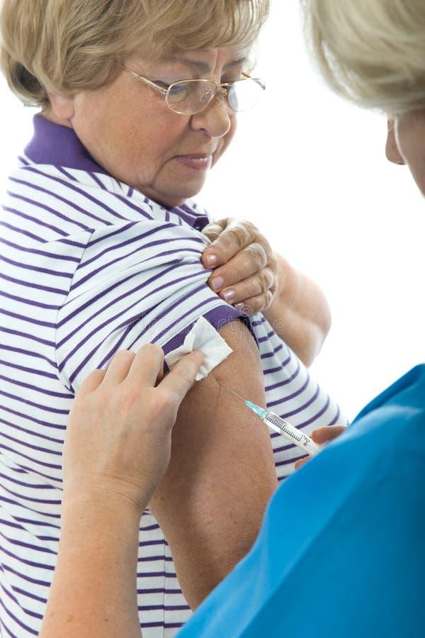 Vacuna contra la gripe de los cerdos foto de archivo libre de regalías