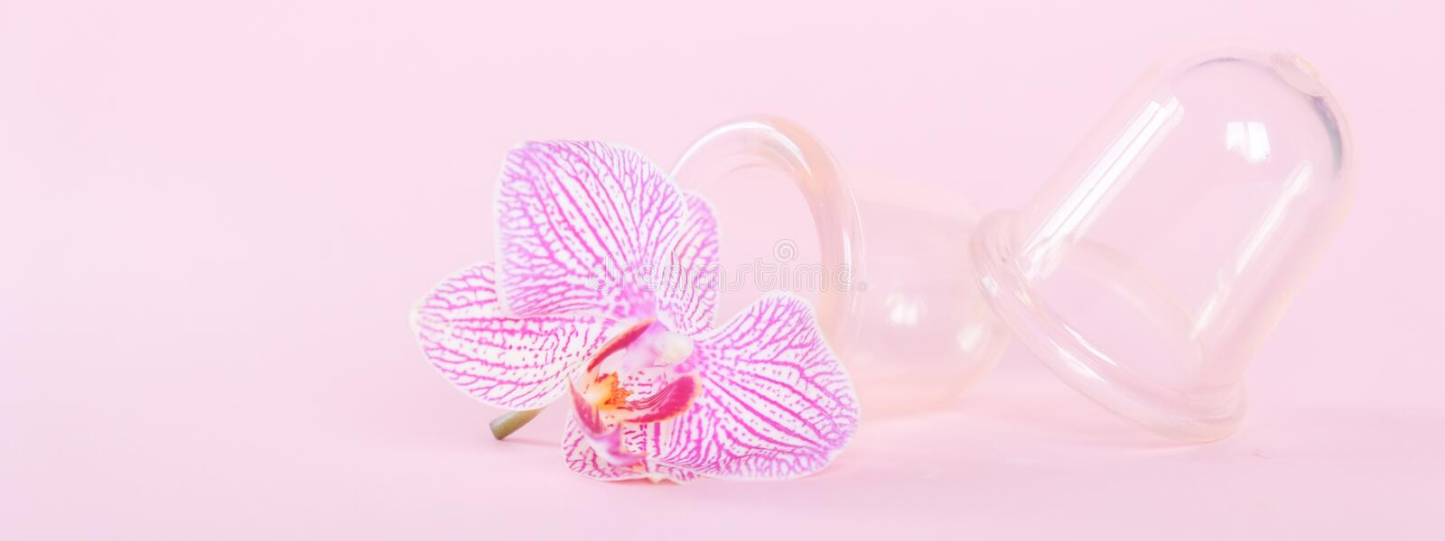 Vacuum cans for body on pink background. Rubber equipment for anti cellulite massage. Do it yourself manual slimming lymphatic drainage and anticellulite stock images