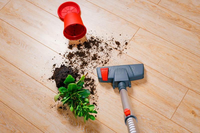 Vacuuming brud od podłoga fotografia royalty free