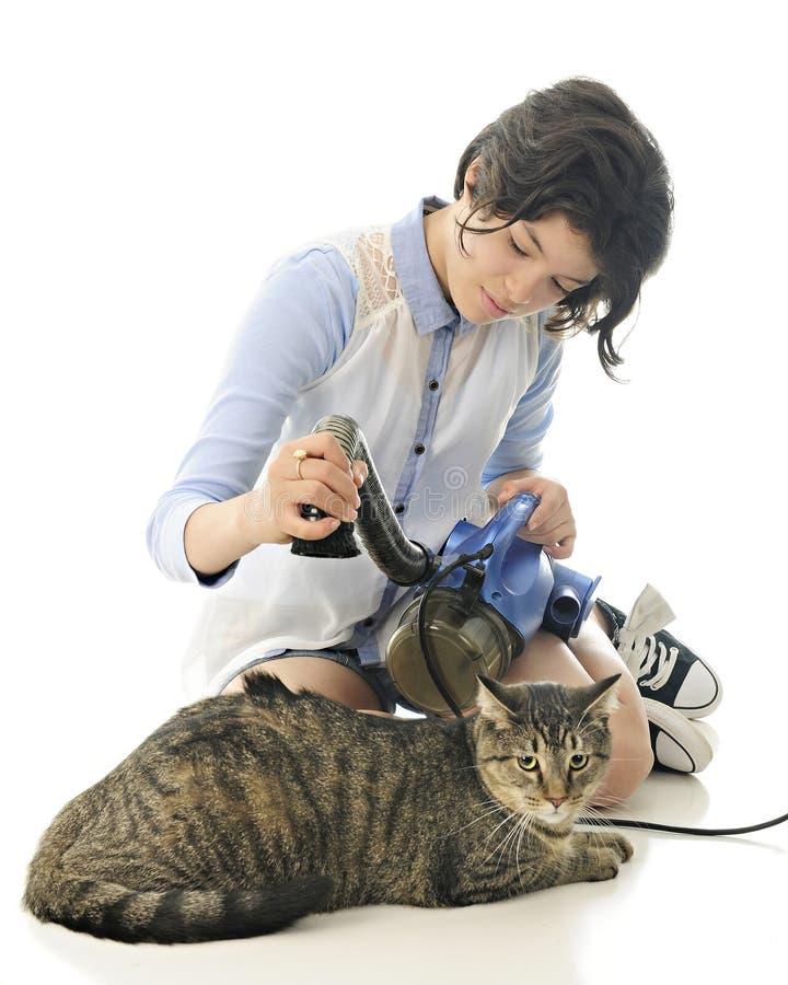 Vacuuming the Kitty stock photo