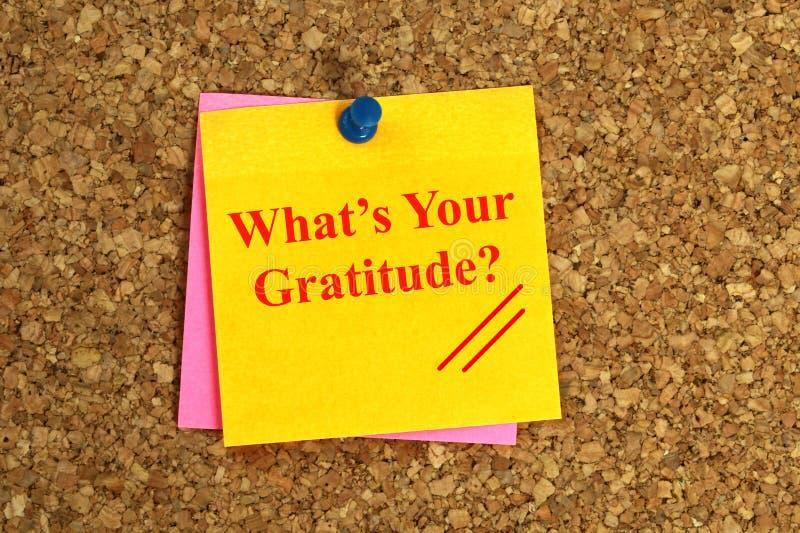 Vad är din tacksamhet? På anmärkningspapper med skjut Pin On Cork Board arkivfoto
