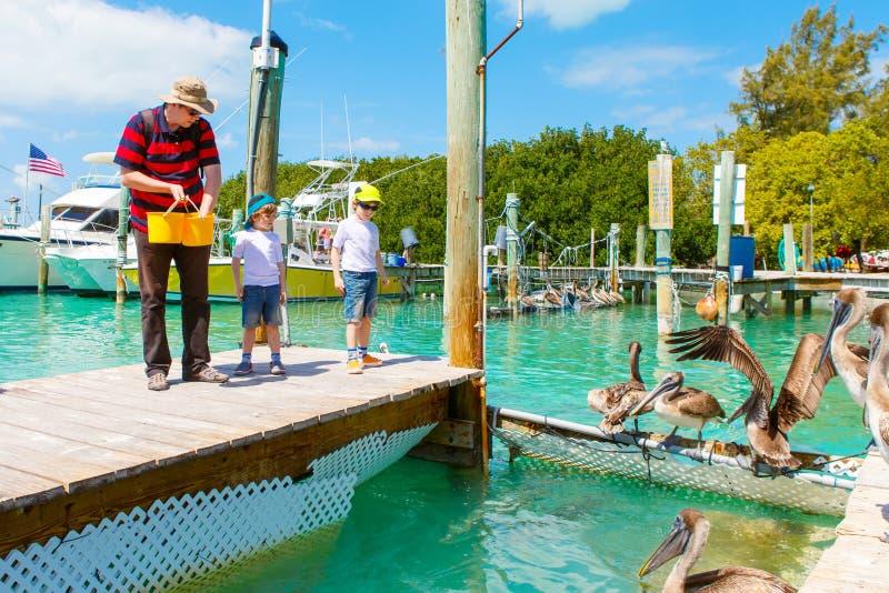 Vader en twee kleine jong geitjejongens die vissen en pelikanen voeden stock afbeeldingen