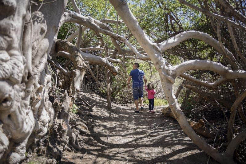 Vader en weinig dochter die op een weg in een moerasland lopen stock afbeelding