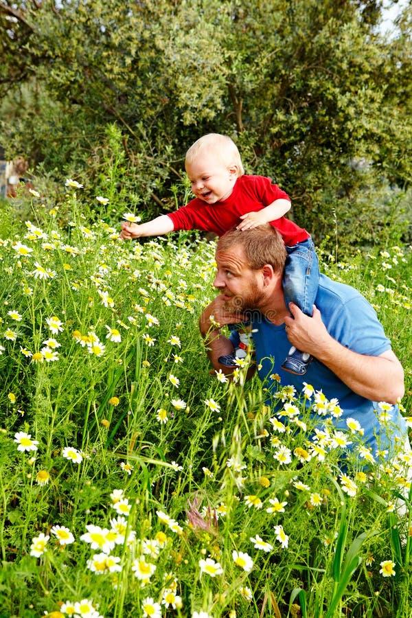 Vader en zoon in bloemen stock foto's