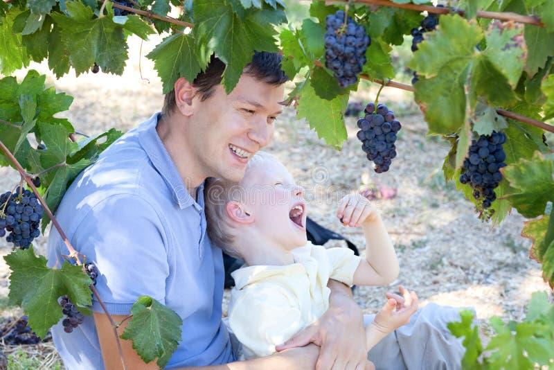 Vader en zoon die druiven eten stock afbeelding