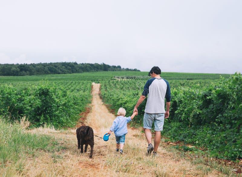 Vader en zoon die met hond op aard lopen, in openlucht royalty-vrije stock fotografie