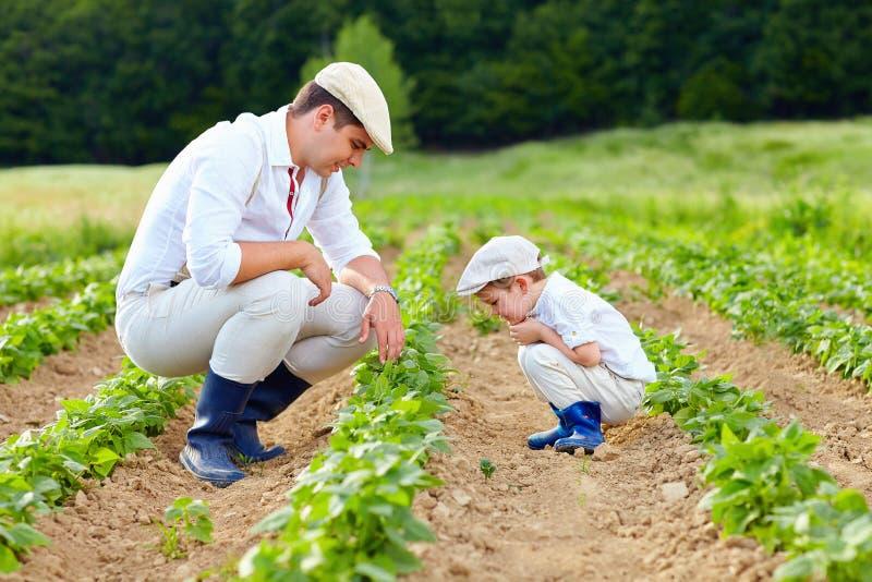 Vader en zoon die op hun hoeve tuinieren royalty-vrije stock foto's