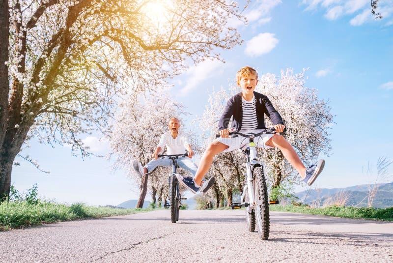 Vader en zoon die pret hebben wanneer het berijden van fietsen bij de landweg onder bloesembomen Het gezonde sportieve beeld van  royalty-vrije stock foto