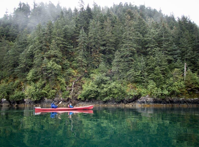 Vader en zoon die in Verrijzenisbaai kayaking, dichtbij Seward, Alaska stock foto's