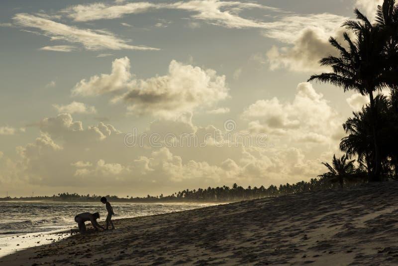 Vader en zoons het spelen op het strand met een Mooie zonsondergang ove stock afbeeldingen