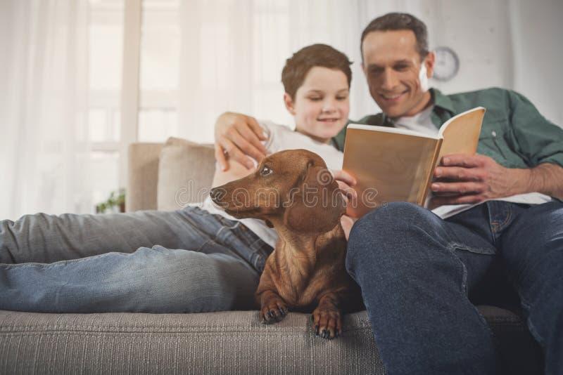 Vader en zoonslezingsboek dichtbij puppy stock foto