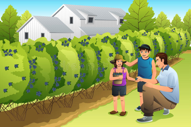 Vader Kids Harvesting Blueberry vector illustratie