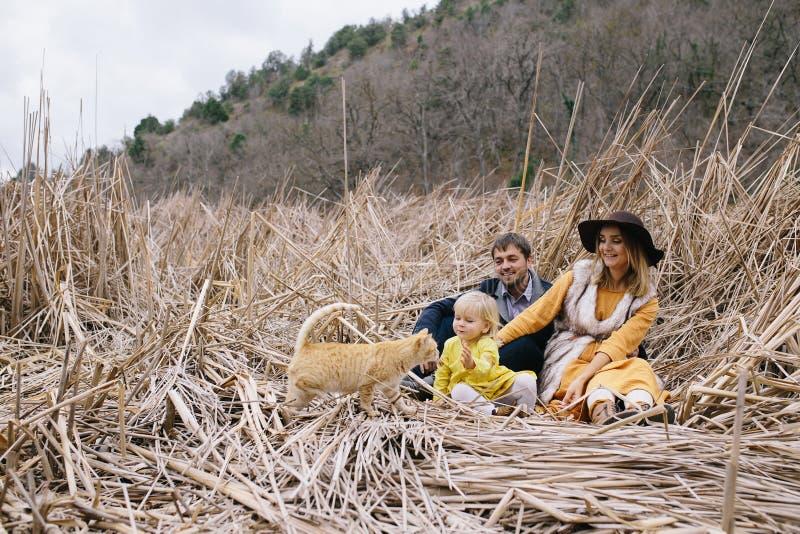 vader, zwangere moeder, meisje en kat openlucht royalty-vrije stock afbeeldingen
