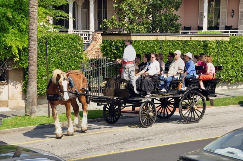 Vagão puxado a cavalo do turista, Charleston imagem de stock royalty free