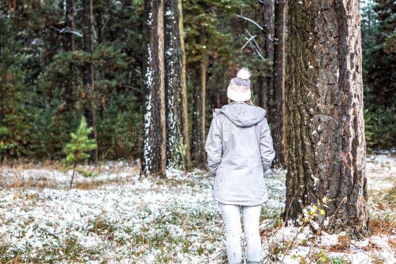 Vagabondage d'hiver de femme dans la forêt de pin époussetée avec la neige image libre de droits