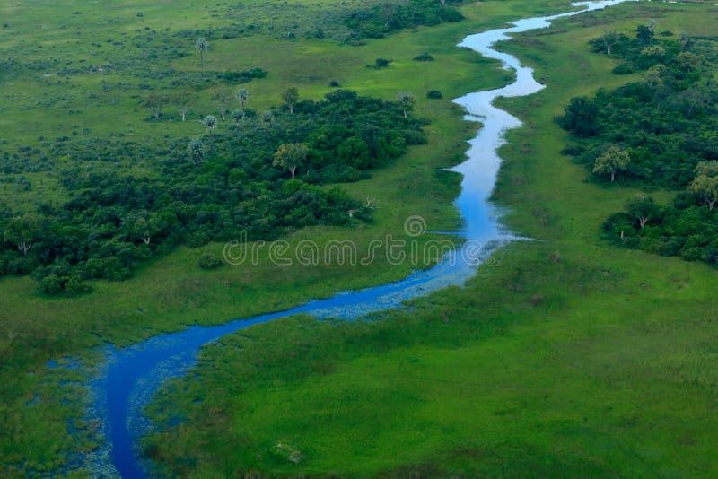 Vagabundo azul, paisagem aérea no delta de Okavango, Botswana Lagos e rios, vista do avião Vegetação verde em África do Sul T fotos de stock royalty free