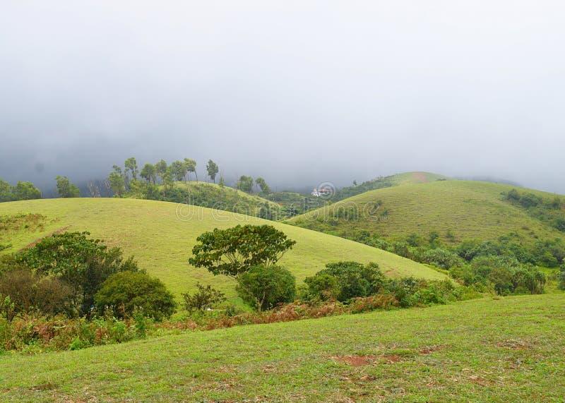 Vagamon-Hügel und Wiesen - Misty Hills und bewölkter Himmel, Idukki, Kerala, Indien lizenzfreie stockbilder