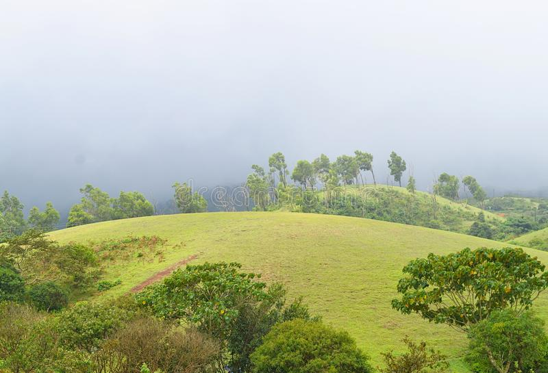 Vagamon Hills and Meadows - Misty Hills and Rainy Climate, Idukki, Kerala, India. This is a photograph of Vagamon hills and meadows, with cloudy sky, green stock photos