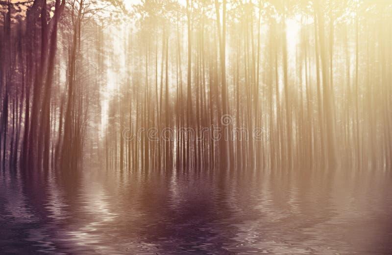 Vage abstracte foto als achtergrond van bos met surreal motie royalty-vrije stock afbeelding