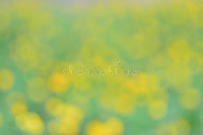 Vage abstracte geelgroene achtergrond De achtergrond van de lente stock illustratie