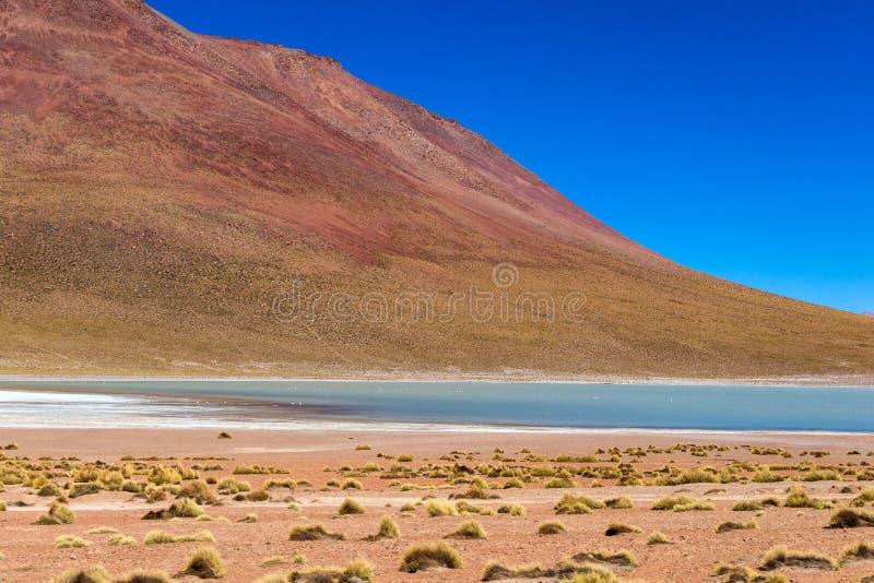 Vage achtergrond met landschap van Boliviaanse Altiplano stock foto's