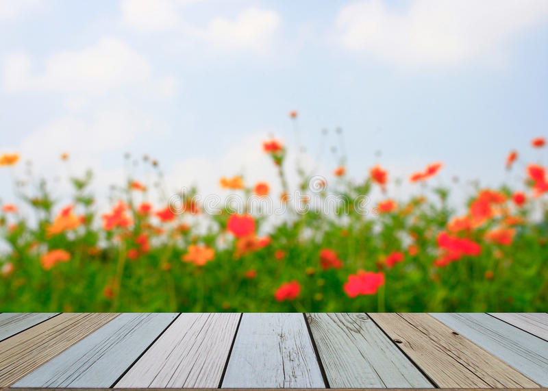 Vage bloemachtergrond royalty-vrije stock foto's