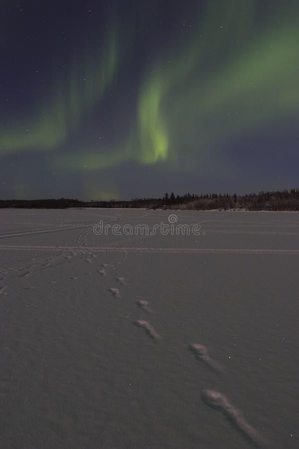 Vage dageraadborealis over bevroren meer royalty-vrije stock fotografie