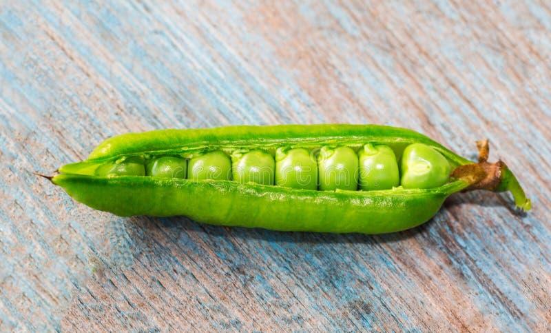 Vagem de ervilhas verdes foto de stock royalty free