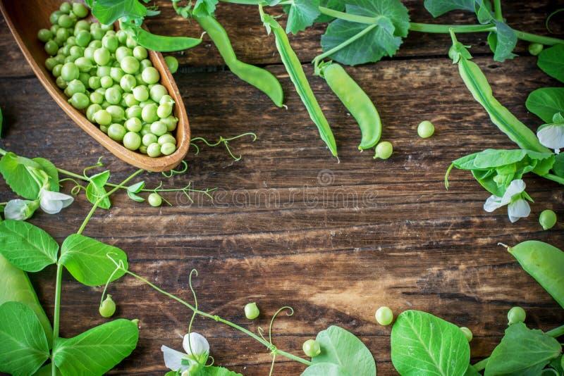 Vagens de ervilhas verdes em uma tabela de madeira imagem de stock royalty free