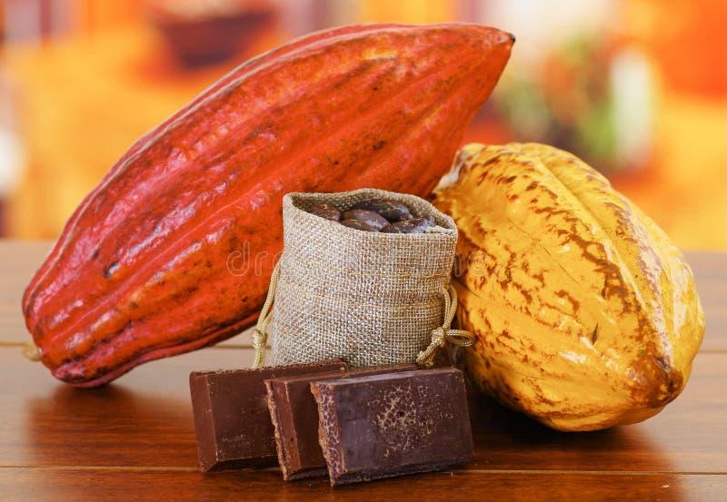 Vagens do cacau e feijões frescos dentro de um saco pequeno e partes escuras de chocolate fotos de stock royalty free