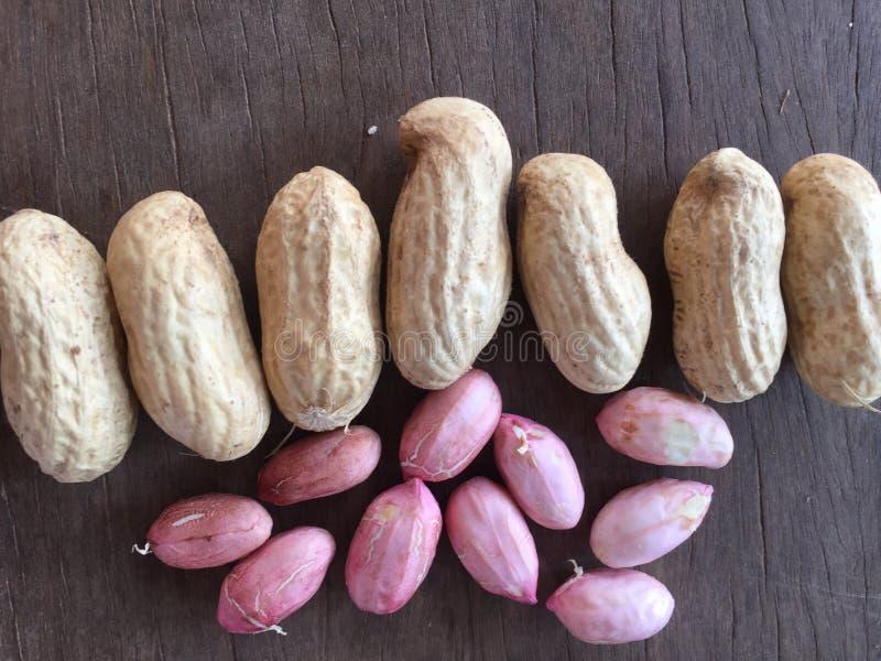 Vagens e sementes orgânicas do amendoim foto de stock royalty free
