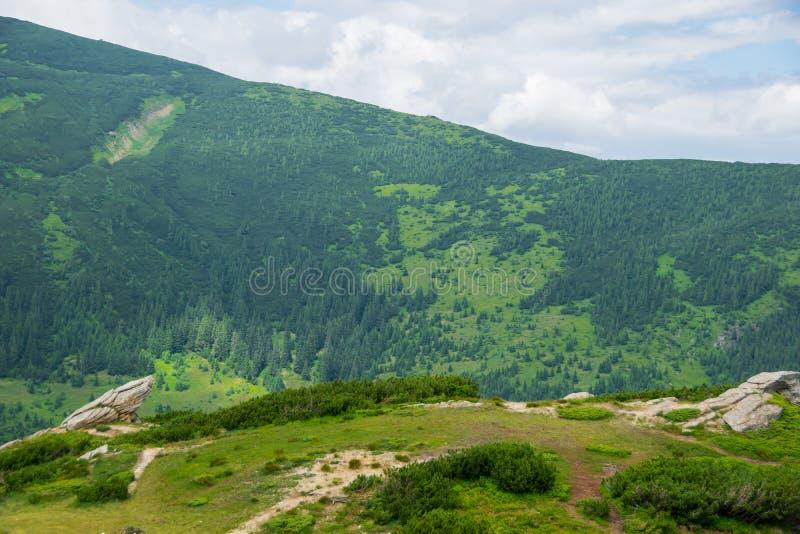 Vagga bildande och grön bergskedja royaltyfri bild