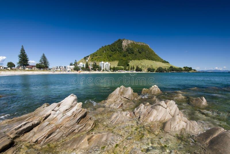 MonteringsMaunganui strand som är nyazeeländsk royaltyfri bild