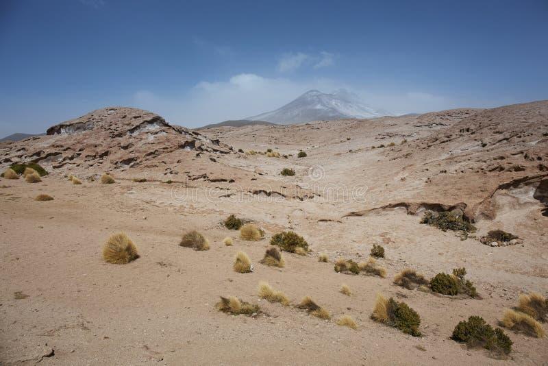 Vagga bildande, Salar de Tara Natural Reserve, San Pedro de Ata arkivfoton