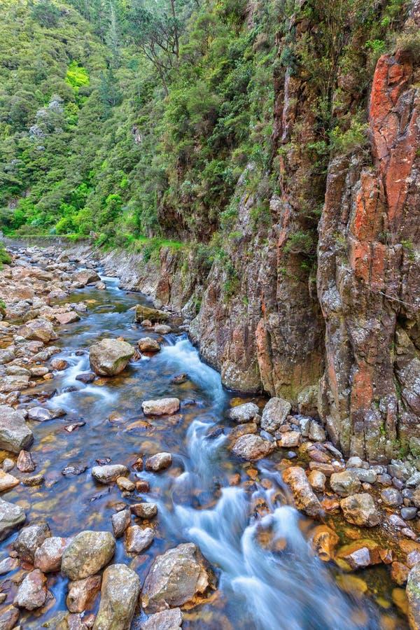 Vagga-fylld flod som är längst ner av en djup klyfta royaltyfri foto