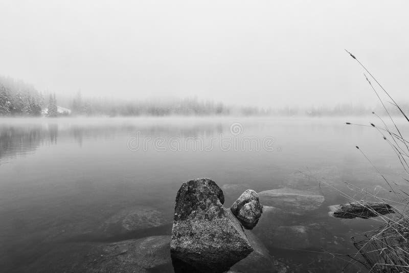 Vagga i den svartvita höstsjön arkivbilder