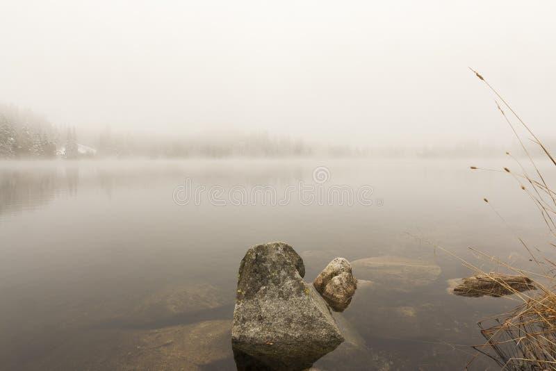 Vagga i höstsjön arkivbilder