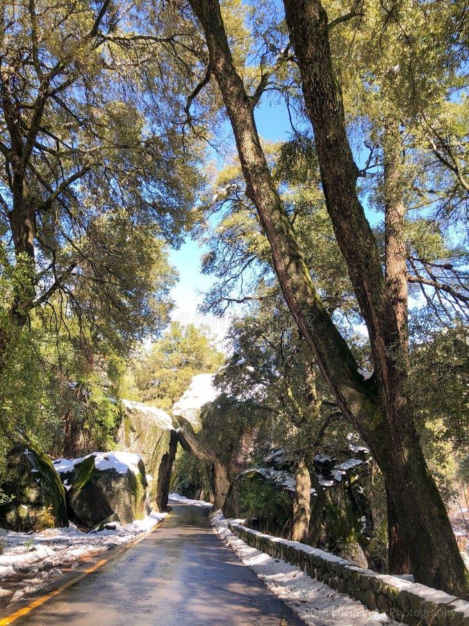 Vagga ingången på den Yosemite nationalparken royaltyfri foto