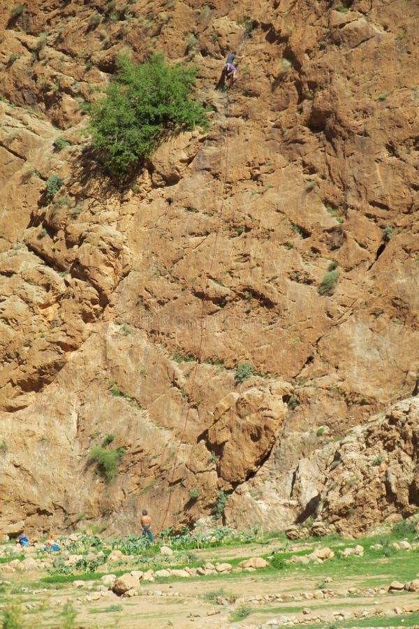 Vagga klättrare på väggrutten arkivbilder