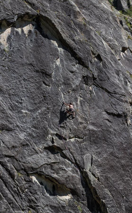 Vagga klättraren, franska fjällängar royaltyfri foto