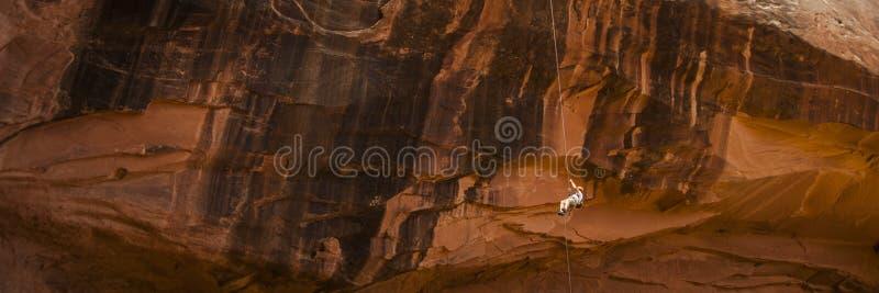 Vagga klättraren som rapelling ner den orange klippan royaltyfria bilder