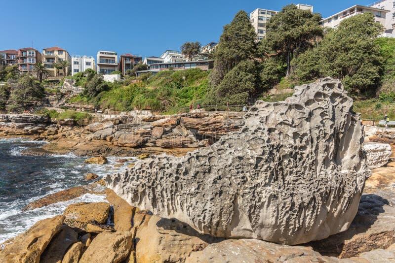 Vagga nära Hunter Park på södra kust av den Bondi stranden, Sydney Australia arkivbild