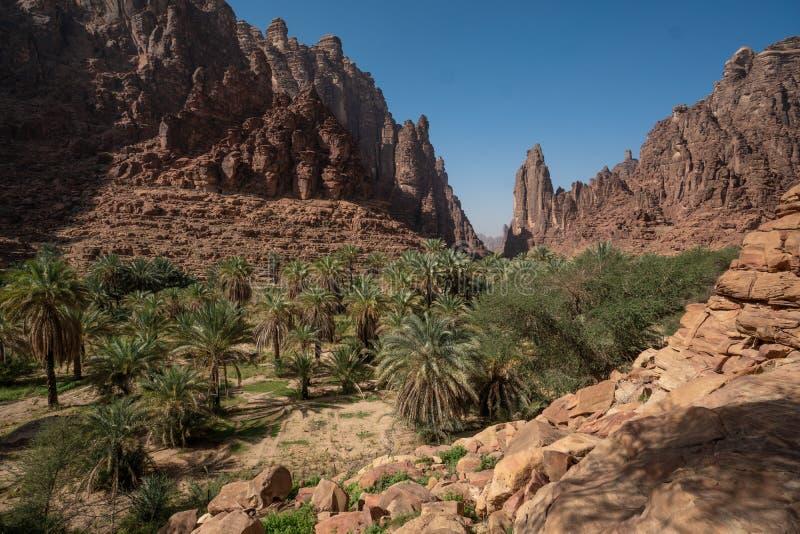 Vagga och oasplatser i Wadi Disah i den Tabuk regionen, Saudiarabien royaltyfri fotografi