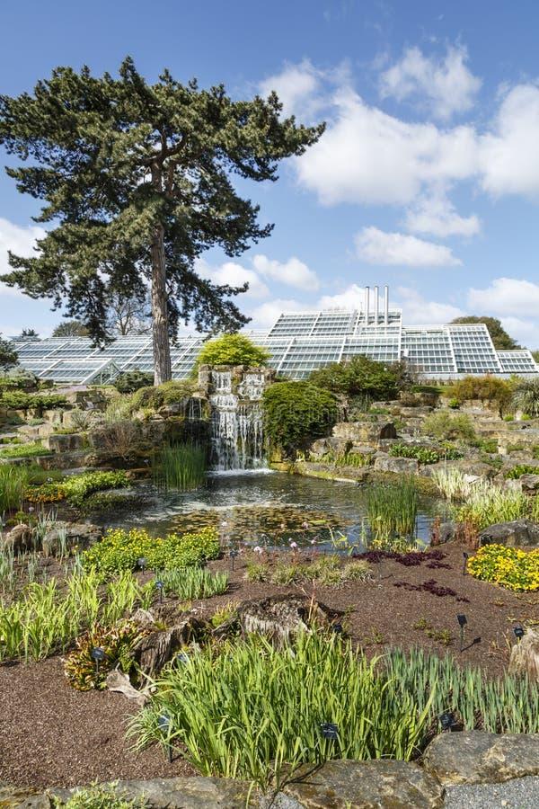 Vagga trädgården på Kew trädgårdar arkivbilder