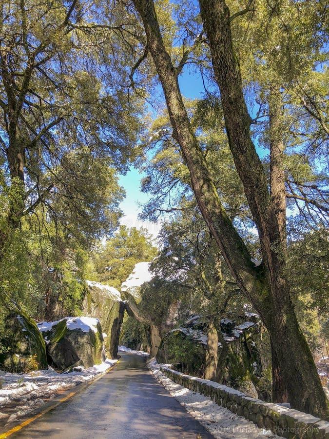 Vagga tunnelen på den Yosemite nationalparken arkivbild