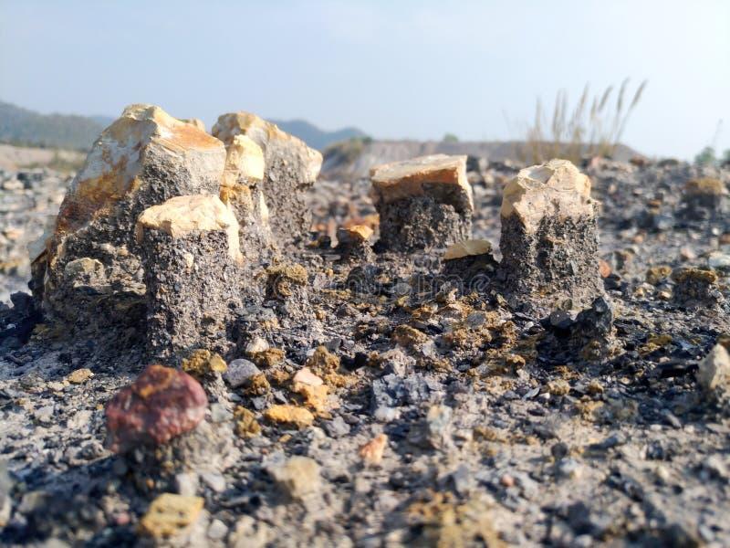 Vaggagruppen är ovanför jordningen som orsakas, genom att rida ut på övergett område fotografering för bildbyråer