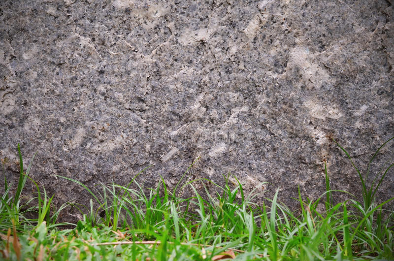 Vaggar bakgrund för textur för stenväggen och för grönt gräs arkivfoto